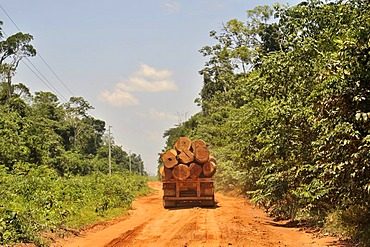 Trucks transporting timber from the Amazon rainforest, deforestation, illegal logging, Mato Grosso, Brazil, South America