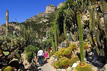 Visitors walking through the path in the Jardin Exotique de Monaco, Botanical Gardens of Monaco, Monaco, Europe