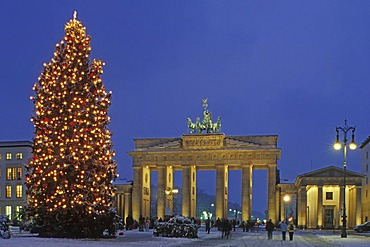 Brandenburg Gate during the Advent season with snow and Christmas tree, Berlin, Germany, Europe