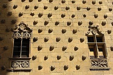 Casa de las Conchas, House of the Shells, 15th century, Salamanca, Castilla-Leon, Spain, Europe