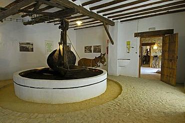 Prensa de Alori, Museo de la cultura del Olivo, museum on the cultural history of the olive tree, Puente del Obispo, Baeza, province of Jaen, Andalusia, Spain, Europe