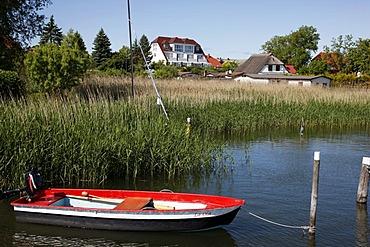 Port in Breege, in the north of Ruegen island, Mecklenburg-Western Pomerania, Germany, Europe