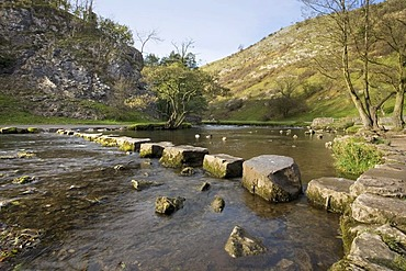 Dovedale stepping stones, Derbyshire, England, United Kingdom, Europe
