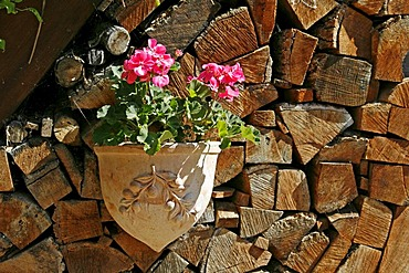 Woodpile with flowers, Les Eyzies, Dordogne, Aquitaine, France, Europe