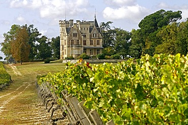 Chateau Pichon-Longueville, in vineyard, Medoc, Aquitaine, France, Europe
