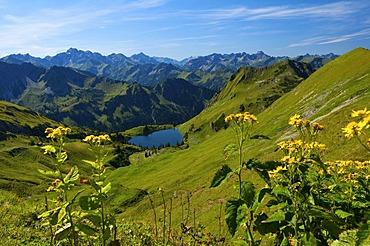 Seealp Lake, Laufbacher Eck-Weg hiking trail, Nebelhorn Mountain, Oberstdorf, Allgaeu, Bavaria, Germany, Europe