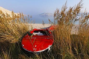 Red boat in the reeds, Rucica bay at Metajna, Pag island, Dalmatia, Adriatic Sea, Croatia, Europe