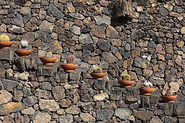 Stairs with potted cacti, cactus garden, Jardin de cactus, designed by Cesar Manrique, Guatiza, Lanzarote, Canary Islands, Spain, Europe