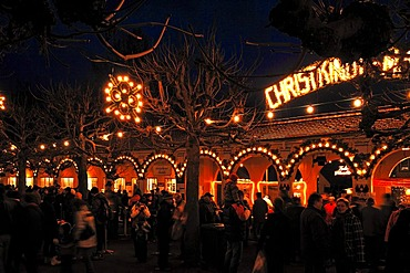 Evening lights at the Christmas market in the castle park, Goethe town Bad Lauchstaedt, Saxony-Anhalt, Germany, Europe