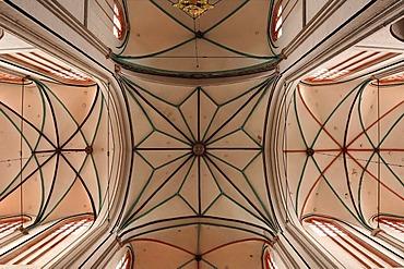Cross vault of the Schweriner Dom St. Maria und St. Johannes cathedral, 1270 - 1422, brick Gothic, Am Dom, Schwerin, Mecklenburg-Western Pomerania, Germany, Europe