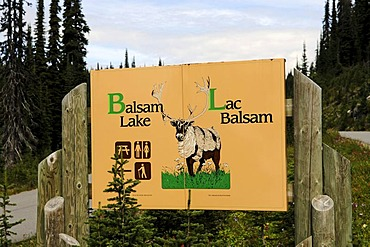 Sign Balsam Lake, Meadows in the Sky, Revelstoke National Park, British Columbia, Canada