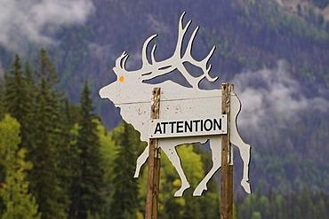 Warning sign, deer, Trans Canada Highway, Revelstoke, British Columbia, Canada