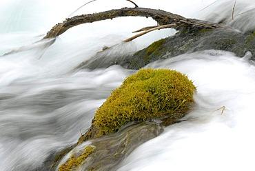 Waterfall and fresh green moss, foaming white fast-flowing water in the Jiuzhaigou Valley, Jiuzhaigou National Park, Sichuan, China, Asia