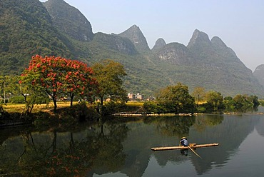 Chinese fisherman with a straw hat on a bamboo raft fishing near Yangshuo in Yulong River in front of flowering trees and karst rocks, Yangshuo, Guilin, Guanxi, China, Asia