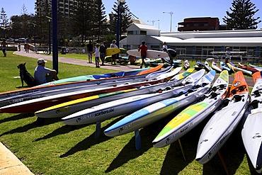 Surf skis on grass area on Scarborough Beach foreshore, Perth, Western Australia, Australia