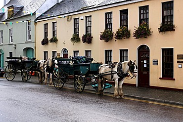 Horses and carriages, Killarney, Ireland, Europe