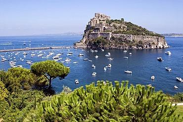 Castello Aragonese on the island of Ischia, Italy, Europe