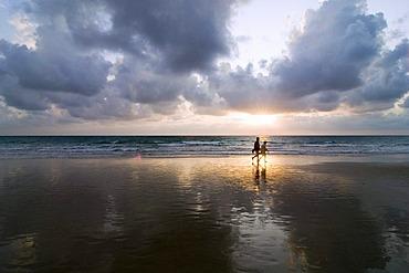 Sunset on the beach of Playa de la Barossa near Novo Sancti Petri, Andalucia, Spain, Europe