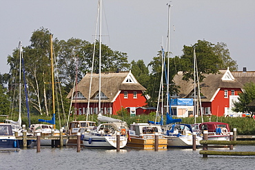 Yachts on the Darss peninsula in the marina of Ahrenshoop-Althagen in front of typical boathouses, Mecklenburg-Western Pomerania, Germany, Europe