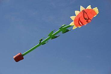 Giant sunflower, kite, character, International Kite Festival, Bristol, England, United Kingdom, Europe