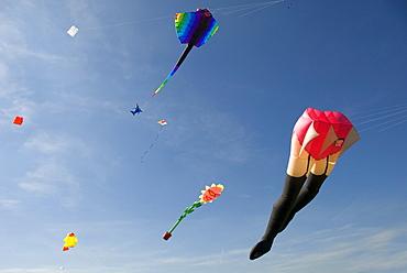 Large kites in the sky, characters, International Kite Festival, Bristol, England, United Kingdom, Europe
