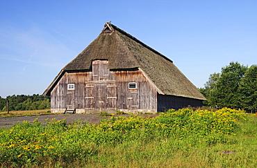 Historic sheep barn near Wesel in the Lueneburg Heath, Lueneburg Heath Nature Park, Lower Saxony, Germany, Europe