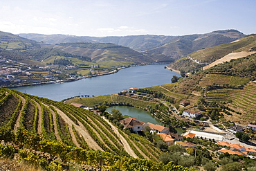 Covelinhas village, Peso da Regua, Douro, Portugal, Europe