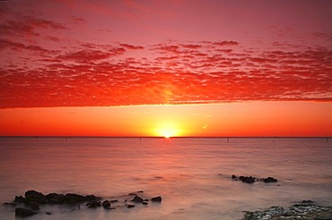 Sunrise at the Wadden Sea at high water, Texel, Holland, Netherlands, Europe - 832-196413