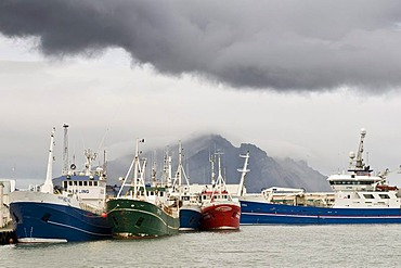 Fishing boats in the harbor of Hoefn, Iceland, Europe