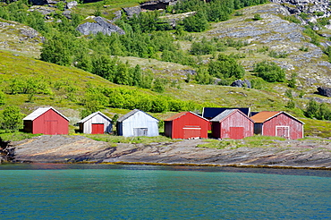 Houses at the Holandfjord, Norway, Scandinavia, Europe