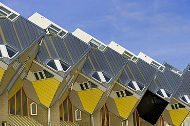 Blaakse Bos, cube architecture, Rotterdam, South Holland, Holland, Netherlands, Europe, PublicGround