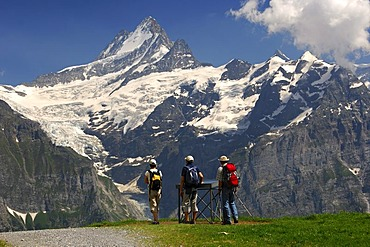 Hikers looking at an information board in front of Mt Schreckhorn and the Upper Grindelwald Glacier, Grindelwald, Bernese Oberland, Switzerland, Europe