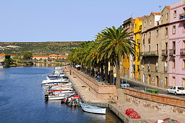 Boats on the river Temo and the historic town centre of Bosa, palm trees along the promenade, Bosa, Oristano, Sardinia, Italy, Europe