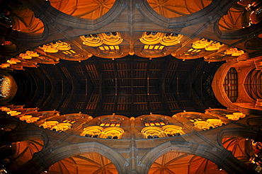 Interior shot of the choir, nave, wooden ceiling, St. Mary's Cathedral, Sydney, New South Wales, Australia