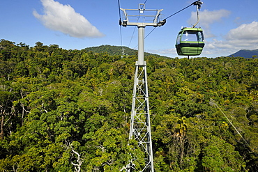 Skyrail Rainforest Cableway, the longest cable car of the world, Kuranda Village, rainforest, Atherton Tablelands, Queensland, Australia