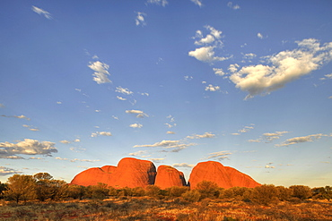 The Olgas rock formation at sunset, Uluru-Kata Tjuta National Park, Northern Territory, Australia