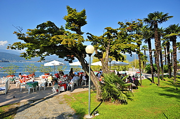 Promenade with sidewalk cafe, Stresa, Lago Maggiore lake, Piedmont, Italy, Europe