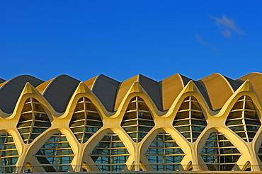 Principe Felipe Museum of Sciences, City of Arts and Sciences by S. Calatrava, Valencia, Comunidad Valenciana, Spain, Europe