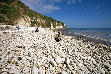 Danes Dyke Beach, near Bridlington, East Riding of Yorkshire, England, United Kingdom, Europe