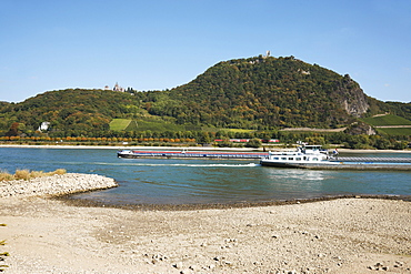 Cargo ships on the Rhine river at low water, river bed, Mt. Drachenfels, between Mehlem and Rolandswerth, North Rhine-Westphalia, Germany, Europe