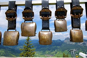 Cowbells on Mt. Neunerkoepfle, Tannheim, Tannheimer Tal valley, Allgaeu, Tyrol, Austria, Europe