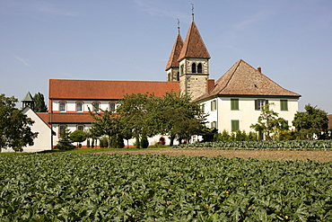 Basilica of St. George, a late Carolingian and Ottonian building in Oberzell, Isle of Reichenau, Lake Constance, Konstanz district, Baden-Wuerttemberg, Germany, Europe