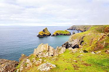 View over Kynance Cove at Lizard Point, Cornwall, England, UK, Europe