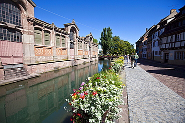 Quai de la Poissonnerie, historic centre, Colmar, Alsace, France, Europe