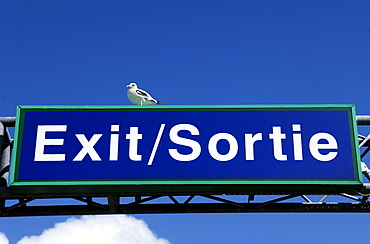 Exit sign with a seagull against a blue sky in the car ferry port of Calais, France, Europe