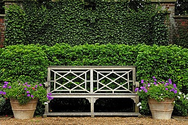 Old garden bench with two flower buckets in the park of Walmer Castle, 1540, in the back ivy (Hedera helix Linnaeus) on a wall, Walmer, Deal, Kent, England, United Kingdom, Europe