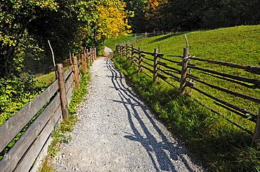 Footpath bordered with wooden fences, outdoor museum, Freilichtmuseum Glentleiten, Glentleiten 4, Grossweil, Upper Bavaria, Germany, Europe