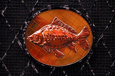 Copper carp sign at a fish restaurant, Bamberg, Upper Franconia, Bavaria, Germany, Europe