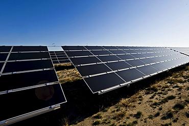 Germany's largest solar farm in Lieberose, Spreewald, Brandenburg, Germany, Europe