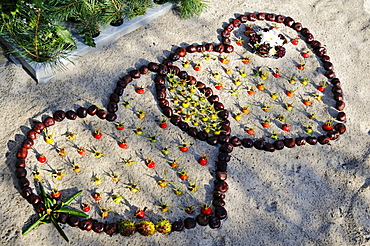Two hearts from chestnuts and rose hips in the sand on the beach of Ruegen Island, Mecklenburg-Western Pomerania, Germany, Europe